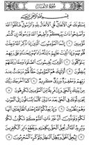 The Noble Qur'an, Page-177
